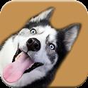 Dog Photobomb Photo Editor icon