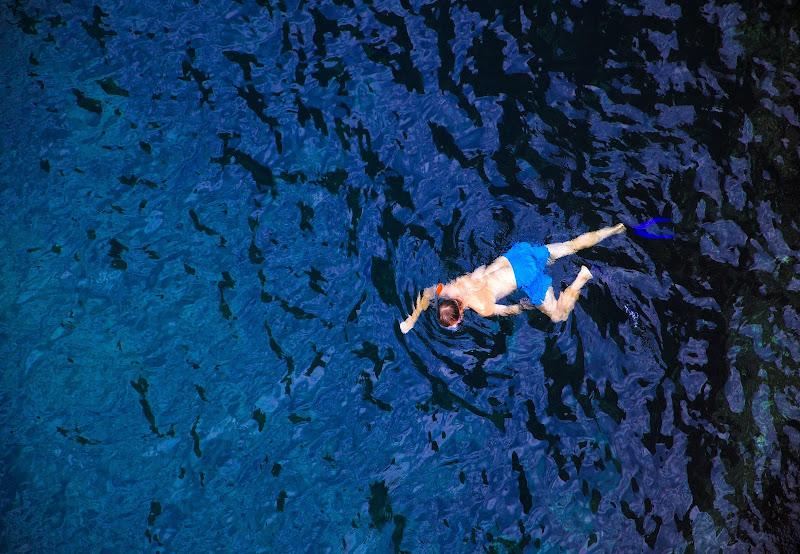 il nuotatore di Primula Vico
