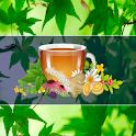 Medicina Natural y Plantas Medicinales icon