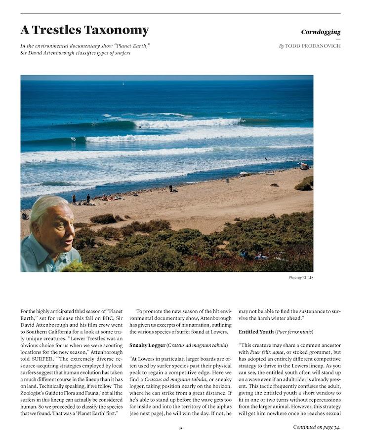 Surfer- screenshot