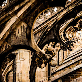 Detail and Unity by Joey - Buildings & Architecture Architectural Detail ( milan italy duomo architecture details cathedral amazing gothic detail ornate pwcdetails churches tourist landmarks )