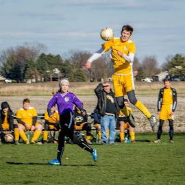Using Your Head by T Sco - Sports & Fitness Soccer/Association football ( football, player, futbol, men, team, head, soccer )
