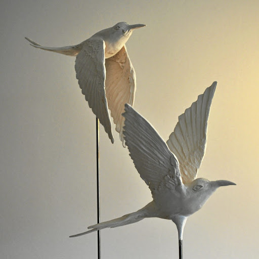Artist Lindy Rodwell van Hasselt's bird sculptures are inspired by her fascination with the natural world.