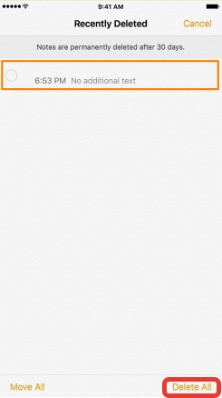 """Delete All"" Notes on iPad"