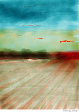 "Photo: ""Winter Wheat Aftermath"" 3.12.13, digital 8x10"