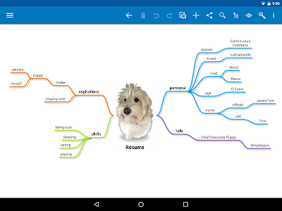 SimpleMind Pro mind mapping screenshot 8