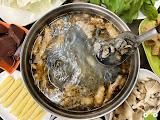 百陽薑母鴨