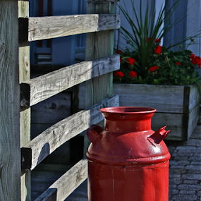 The Red Jug by Susannah Lord - Artistic Objects Antiques ( red, milk jug, milk, red flowers, jug, pavers,  )