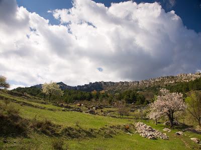La Serra des de Cal Pauló