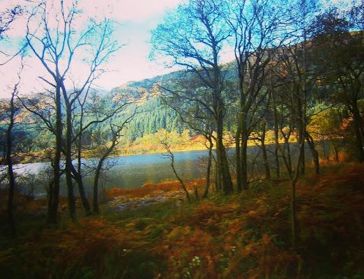 Quadro d'autunno di Luemily