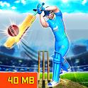Real World Cricket League 19: Cricket Games icon