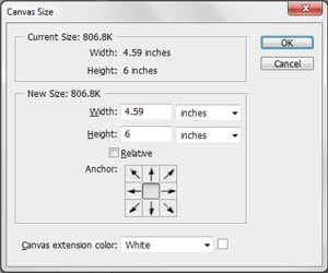 Canvas Size Window