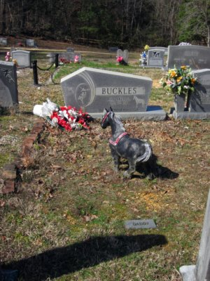 Buckles rests peacefully at the Head Springs Cemetery