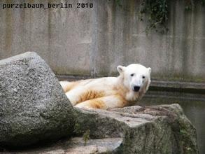 Photo: Knut wuenscht einen schoenen Septembermorgen :-)