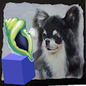 Magic Conch Shell with Puppy icon