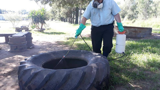 Fumigación Preventiva contra Alacranes