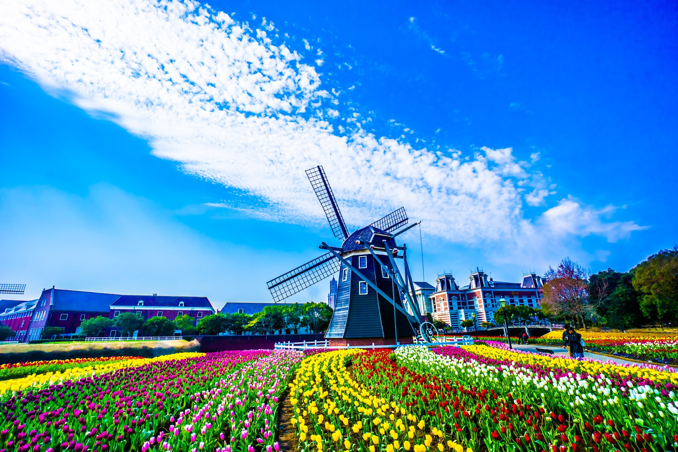 Huis Ten Bosch Flower Road2