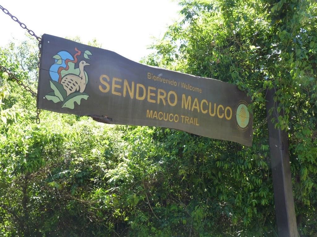 Sendero Macuco