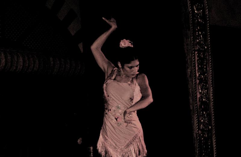 flamenco 4; click for previous post