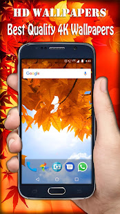 Autumn Wallpaper 4k Ultra Hd Apps Bei Google Play