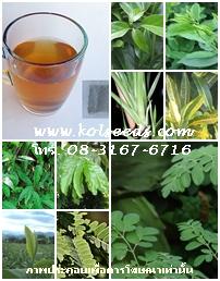 ชาผักพื้นบ้าน 9 ชนิด