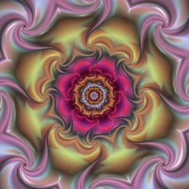 Flower 11 by Cassy 67 - Illustration Abstract & Patterns ( abstract, abstract art, digital art, harmony, flowers, fractal, light, digital, fractals, energy, floral, flower )