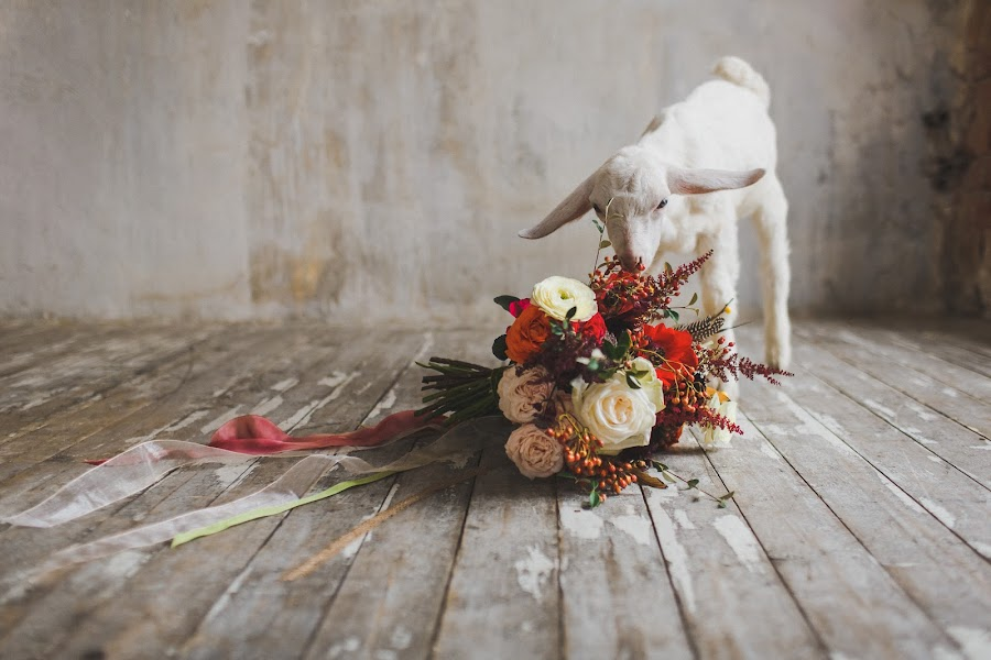 Wedding photographer Slava Semenov (ctapocta). Photo of 04.11.2014