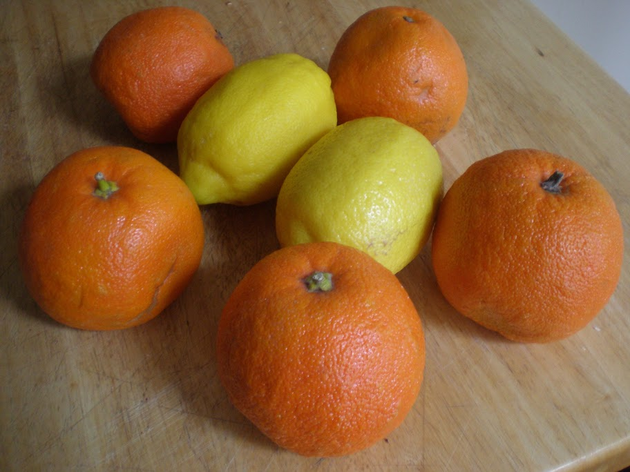 Seville oranges and lemons