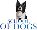 School of Dogs Ltd