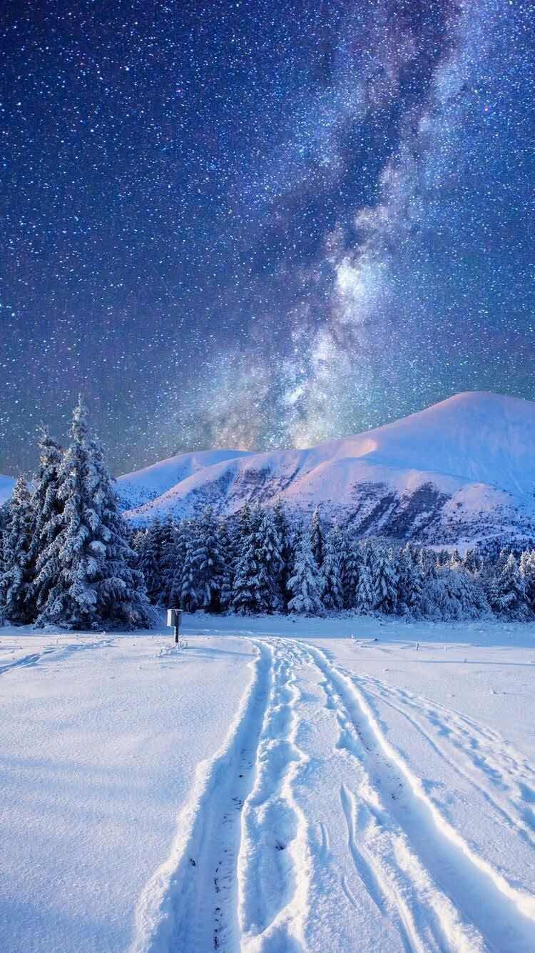 Iphone And Android Wallpapers Starry Winter Landscape Wallpaper