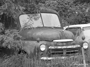 Photo: (Year 2) Day 345 - Another Old Car on Puget Island