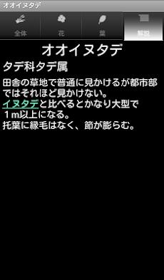 シンプル植物リスト-雑草編2-のおすすめ画像4