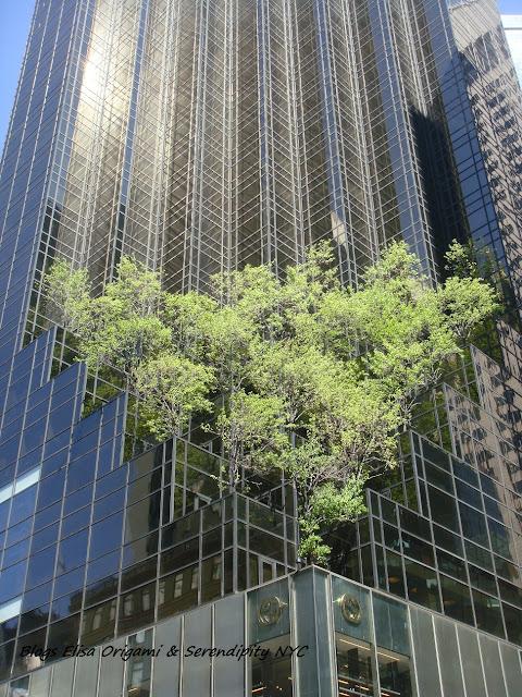 Jardín en la Trump Tower, Nueva York, Quinta Avenida, Elisa N, Blog de Viajes, Lifestyle, Travel