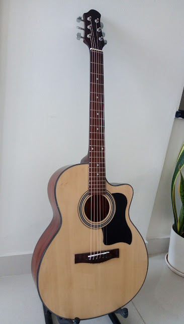 Acoustic guitar DJ100