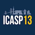 ICASP13 icon