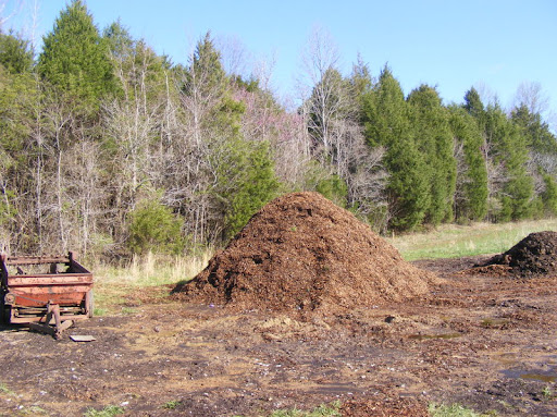 Extreme Composting - Homesteading Questions