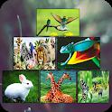 Zoology Basics icon