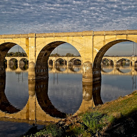 Natural Columns by Gregory Evans - Buildings & Architecture Bridges & Suspended Structures ( outdoors, nature, bridge, river, skyline, water )