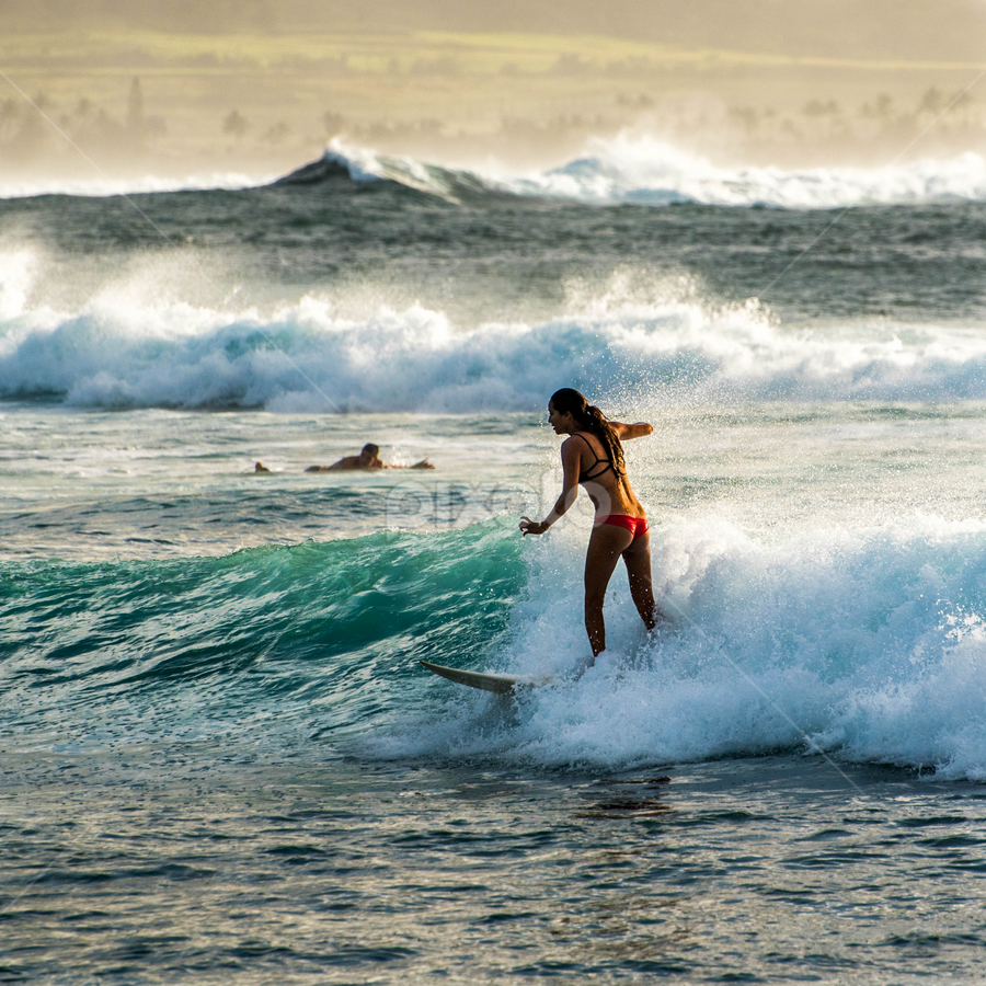 Wave Baby  by Darren Sutherland - Sports & Fitness Surfing ( hawaii 2015 )