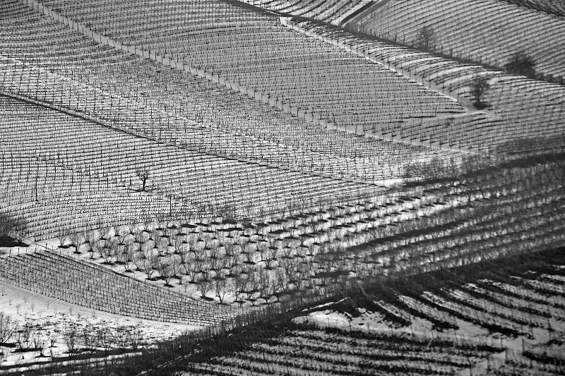linee di neve nera di chia