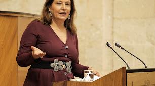 Carmen Crespo durante su comparecencia.