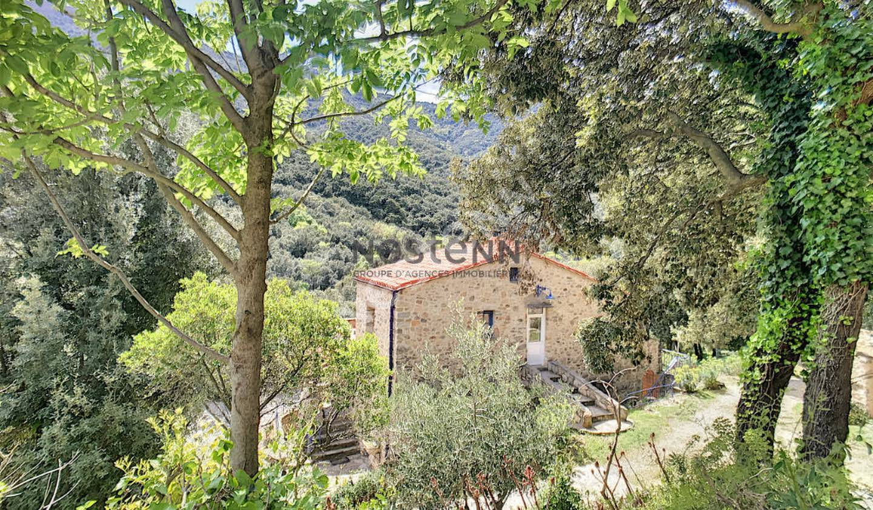 Maison avec terrasse Sorède