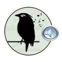 Chirping Birds of Indonesia icon