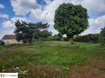 terrain à Bussy-le-Repos (89)