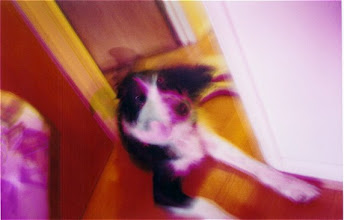 Photo: Lomo Junx, pink filter, 2003