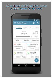 Budget Manager - náhled