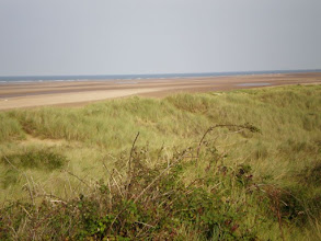 Photo: Norfolk Coast Path - From Holme to Brancaster - Approaching Thornham