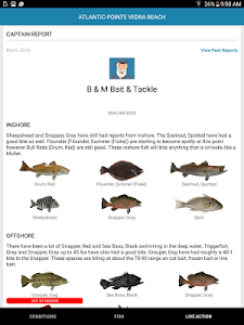 Pro Angler - Fish like a Pro! screenshot 13
