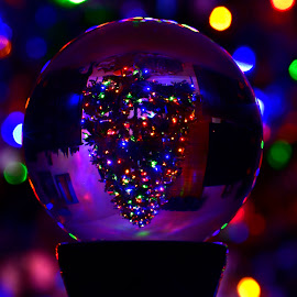 Christmas Tree - Magic Ball by Jeff Sluder - Public Holidays Christmas ( christmas tree, christmas 2018 )