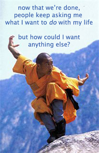 Secret 9 - Image: a man doing martial arts on the top of a mountain. Text: now that we're done, people keep asking me what I want to do with my life but how could I want anything else? Font: sans-serif.